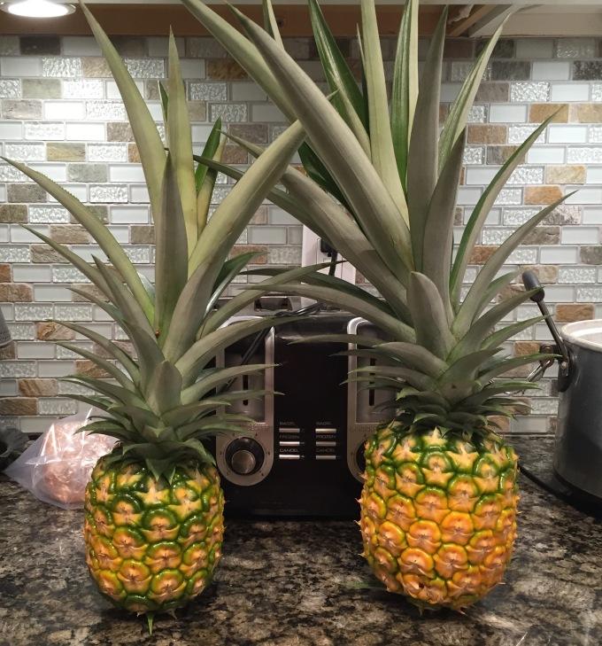 pineapple-fruits