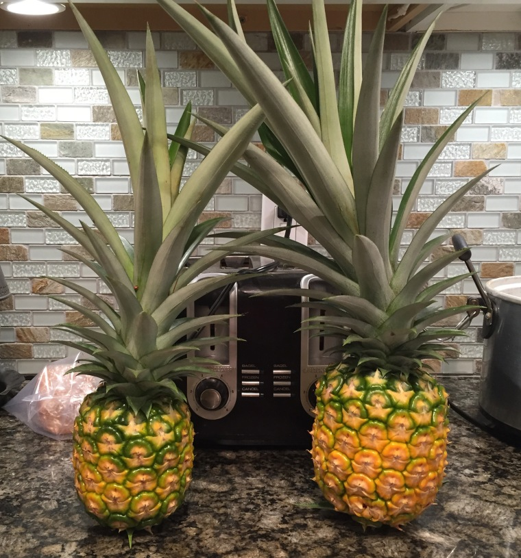 pineapple-fruits
