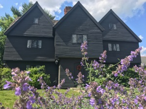 Witch House Purple Flowers
