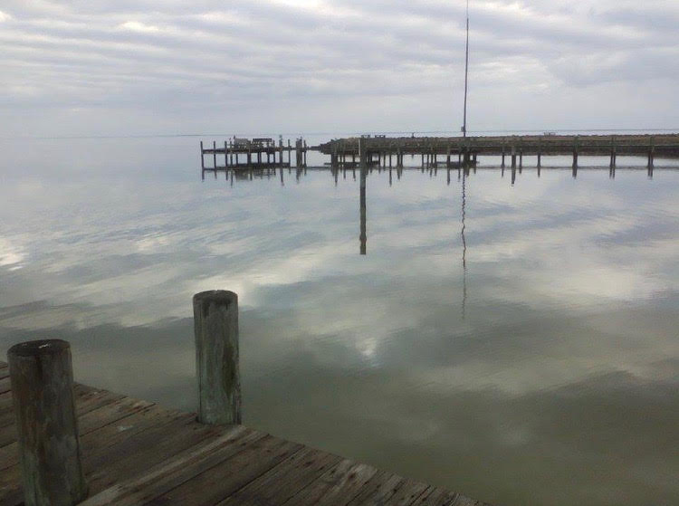 reflectionnnk