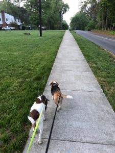 walk poem